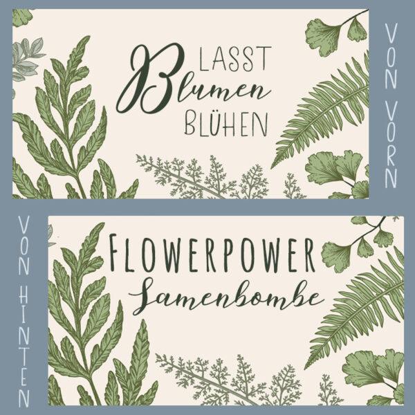 Samenbombe Botany Lasst blumen blühen